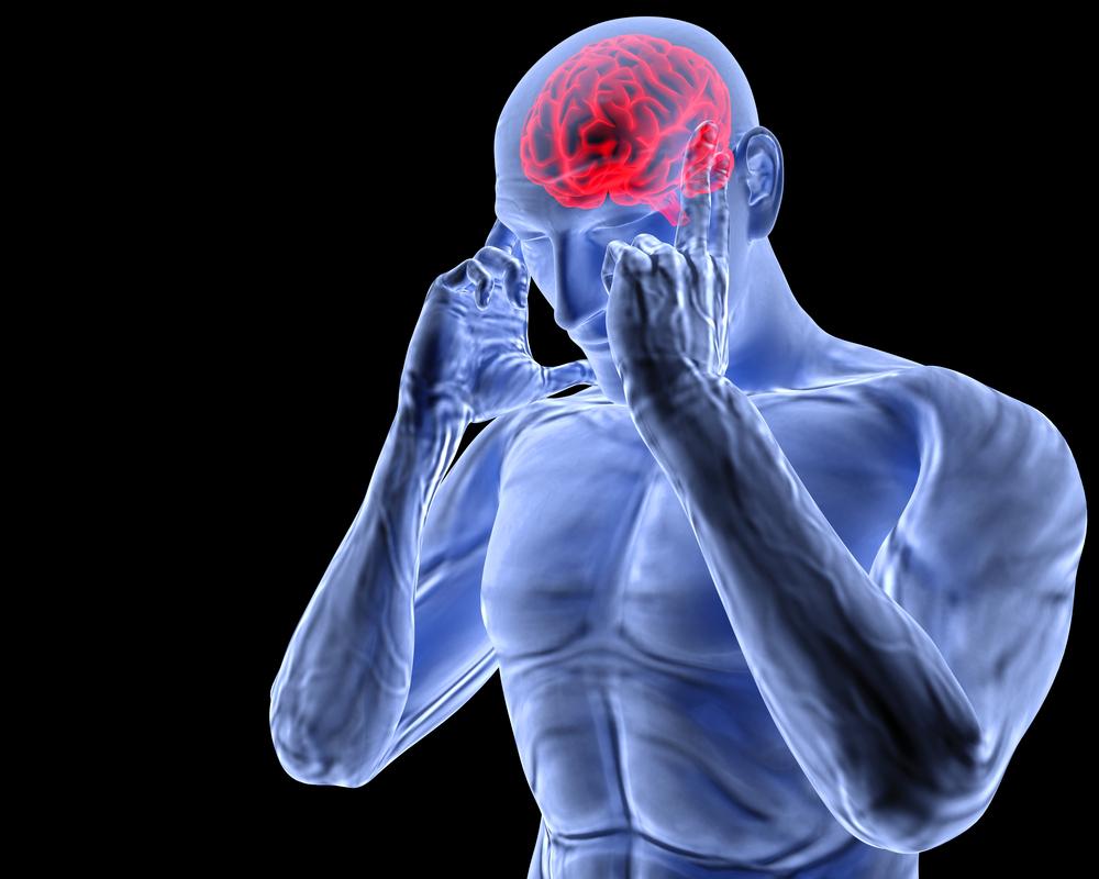 brain_shutterstock_103520693